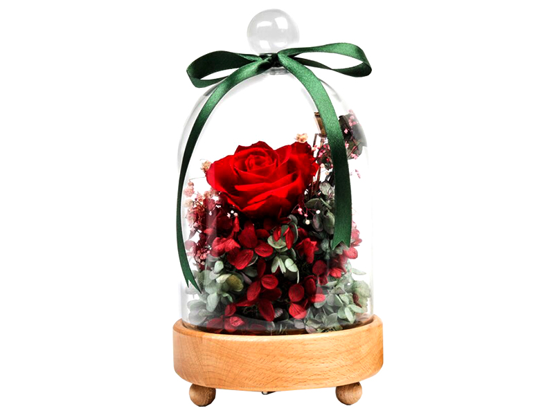 Luxurious flower natural real preserved rose in rotary music glass box